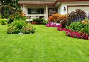Home Garden Maintenance